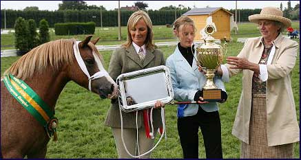 Posy being presented with the Supreme champion award from Lady Evans Bevan president of the Welsh Pony and Cob Society